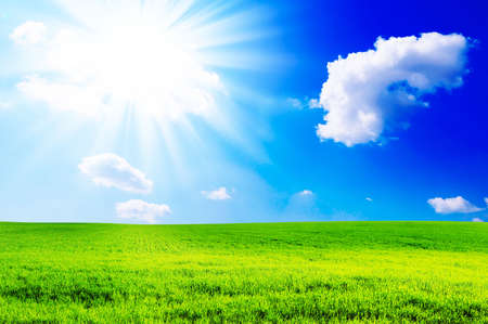 field and sun Stock Photo - 5021437