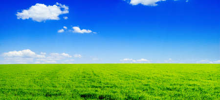 field and sky Stock Photo - 5255136