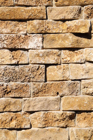 Wall from a brick Stock Photo - 5397744