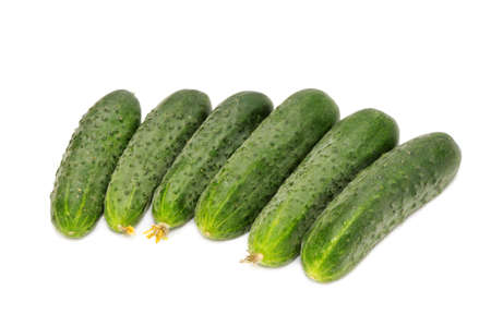 cucumbers isolated on a white background photo