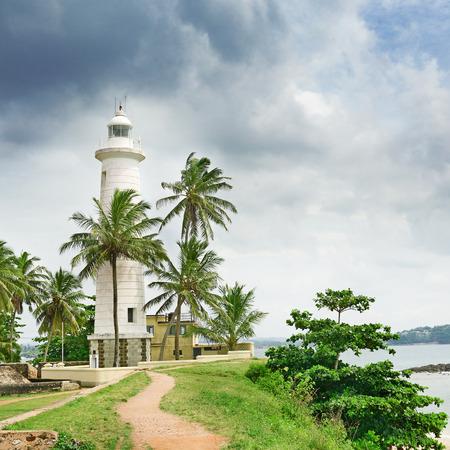 Lighthouse and palm trees on background sky.                                     photo