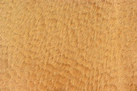 textura: Foto di sabbia superficiale. sfondo