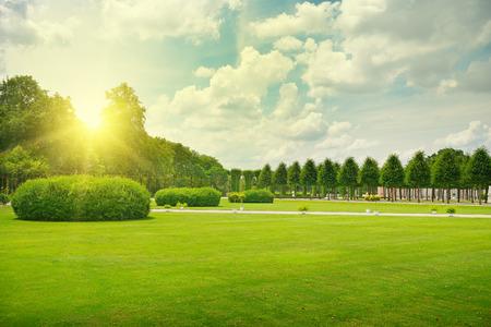 日出美麗的公園