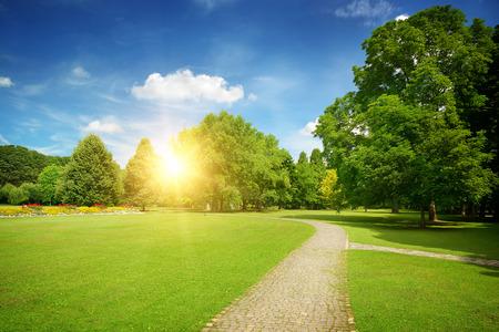 sol radiante: Salida del sol en el hermoso parque