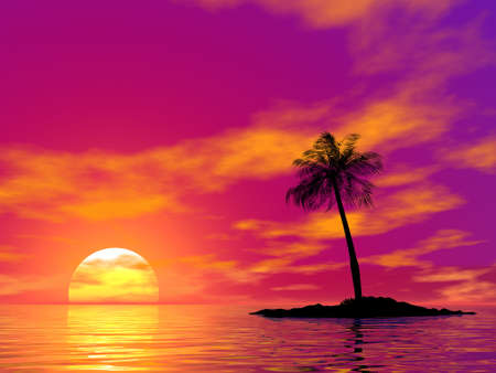 ocean sunset: single palm on the uninhabited island on sunset of a sun Stock Photo