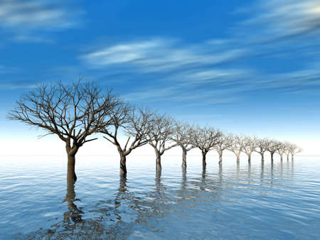 trees in surroundings water as a result of flood on a background cloudy sky