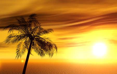 onbewoond: enkele palm op het onbewoonde eiland op zonsondergang van een zon Stockfoto