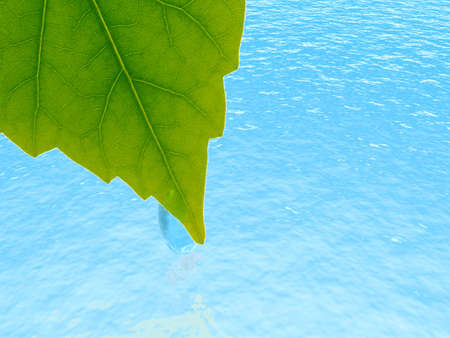 brightly green leaf with the drop of dew on a background blue waters photo