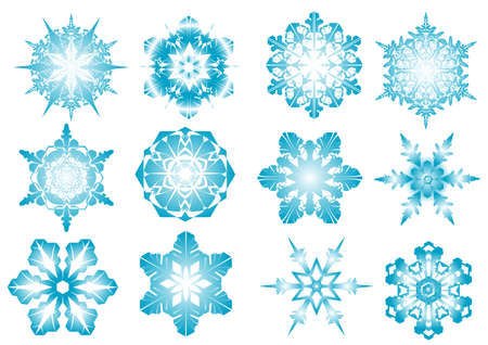 Beautiful vector blue snowflakes on a white background Vector