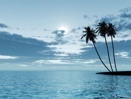 Three palm trees in a moonlight at night on a background of the cloudy sky Stock Photo - 2434332