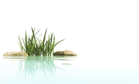 morning dew: Small island from stones and grasses in an environment of water Stock Photo