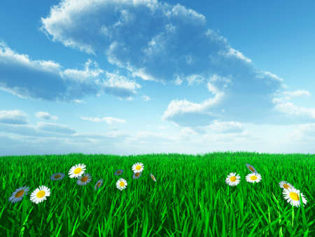 grass and white flowers on field in solar summer day Stock Photo - 2753343