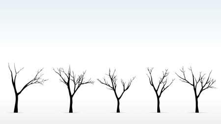 styczeń: Zimą drzewa na tle mglisty zarys drzew