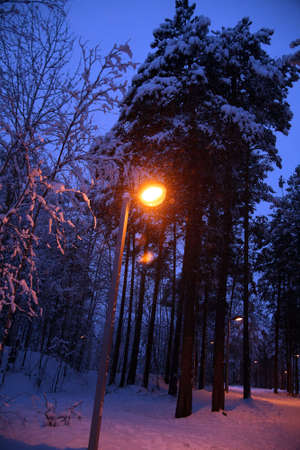 street lantern lighting by a late winter evening photo