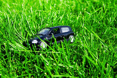 toy car in green grass in a summer day photo