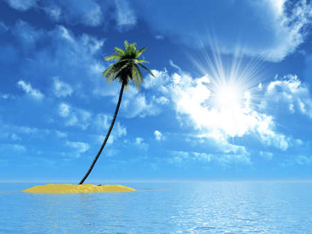 caribbean island: single palm on the uninhabited island in beams of a sun
