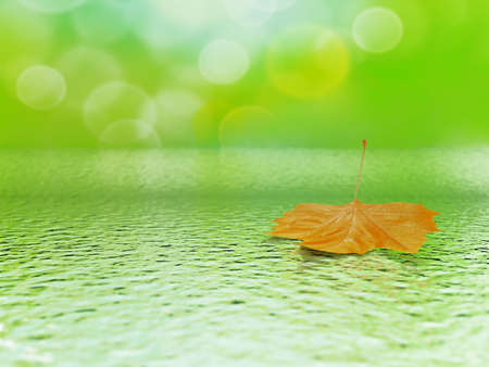 single orange mapple leaf in water on a tender blurred background photo