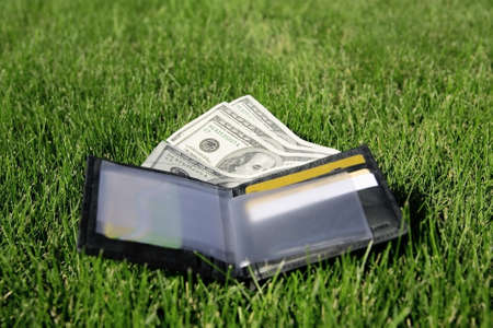 leather purse with a money on a green grass photo