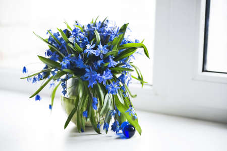 Fresh spring flowers in a vase on a window sill Stock Photo - 9418658
