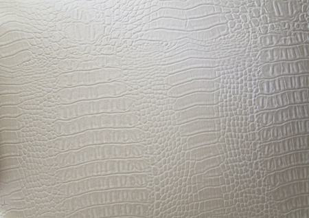snakeskin: texture of a genuine luxury white hide