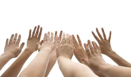 worship white: many female hands are lifted up on white background