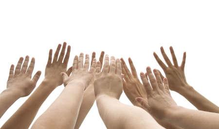 manos levantadas: muchas manos femeninas se levantan en el fondo blanco