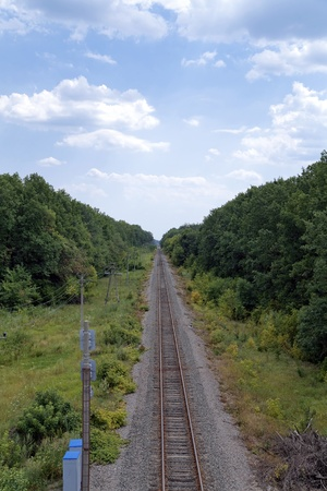 wood railroad: Railroad surrounded by trees stretches to the horizon