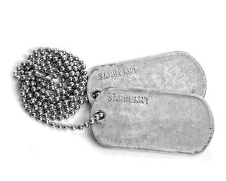 dog tag: DOG TAGS Stock Photo