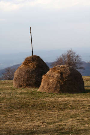 husbandry: haystack on a mountain meadow , landscape in the background