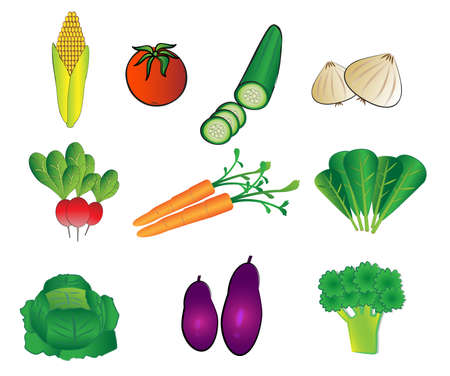 vegetables illustrations Stock Vector - 5507363