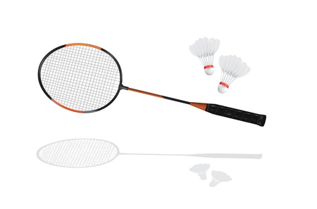 shuttlecock: Detailed badminton racket and shuttlecock in vector format