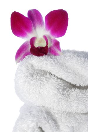 Orchid flower on white towel