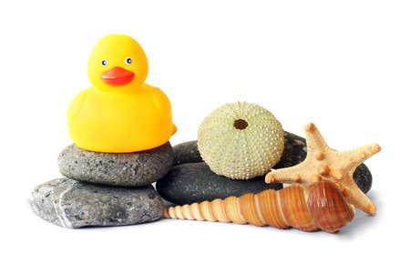 duckie: Seashore scene with rubber duckie