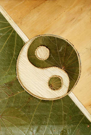chinese philosophy: Ying-Yang symbol in dried leaves