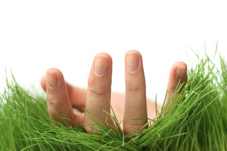were: Womans hand palm up in the grass as if she were alying on her back
