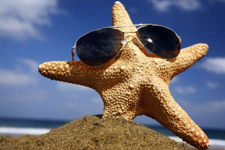 Starfish on a sunny beach with sunglasses photo