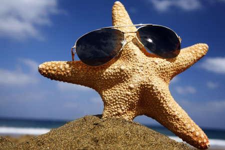 Starfish on a sunny beach with sunglasses