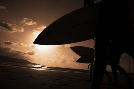 Surfers going into the water at sunset