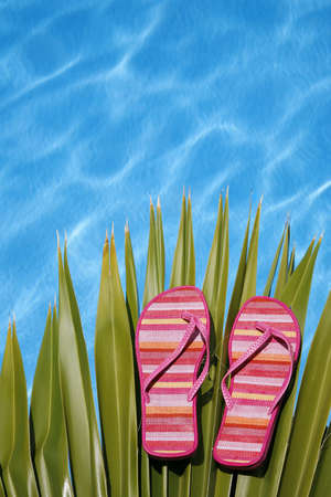 informal clothes: Bright pink flip-flops on palm leaf by blue pool