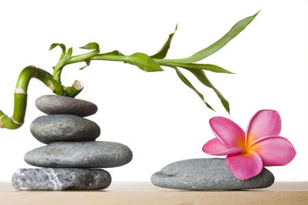 Stone stacks with tropical flowers and lucky bamboo photo