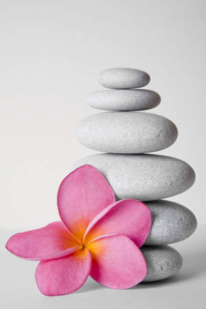 Stack of white pebbles and pink frangipani flower Stock Photo - 5544221
