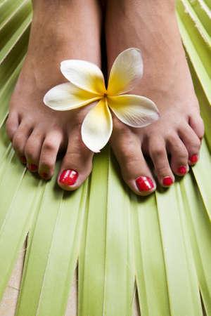 Womans feet on a tropical leaf with frangipami flowers photo