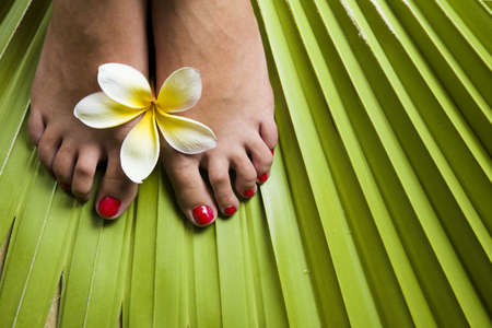 Womans feet on a tropical leaf with frangipami flowers photo
