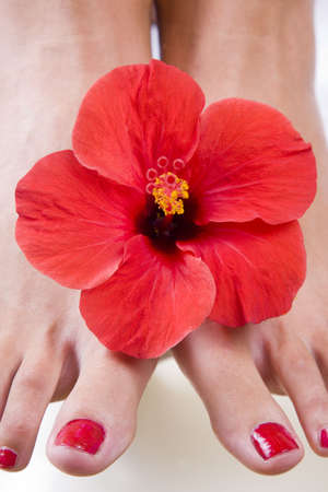 Womans feet with a red hibiscus flower Stock Photo - 5544228