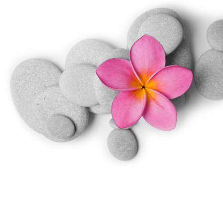 Nice calm image of beach pebbles with a single pink frangipani flower on a white background photo