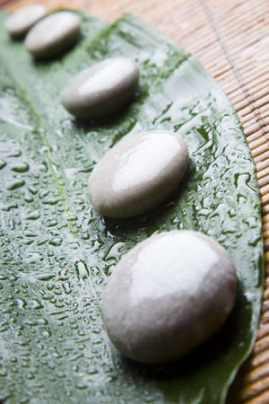 Rounded pebbles on a leaf with water droplets photo