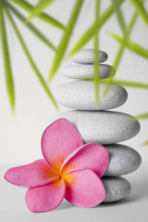 Stack of white pebbles and pink frangipani flower