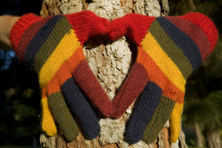 Womans hands in colorful gloves making a heart shape on a pine tree trunk