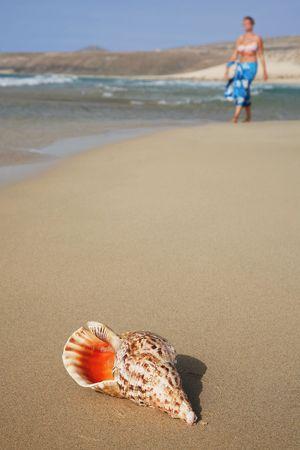 beachcomb: Woman walking towards tropical conch on the beach