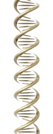 nucleic: Stylized DNA double Helix